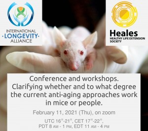 Conference - ILA- HEALES - February 11